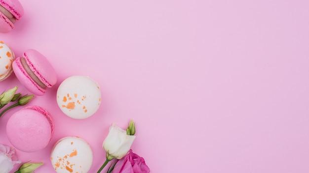 Postura plana de macarons com rosas e cópia espaço