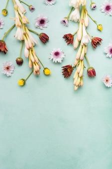 Postura plana de orquídeas de primavera e margaridas com espaço de cópia