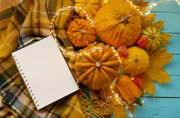 Postura plana de outono