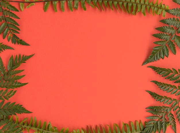 Postura plana de quadro de folhas com espaço de cópia