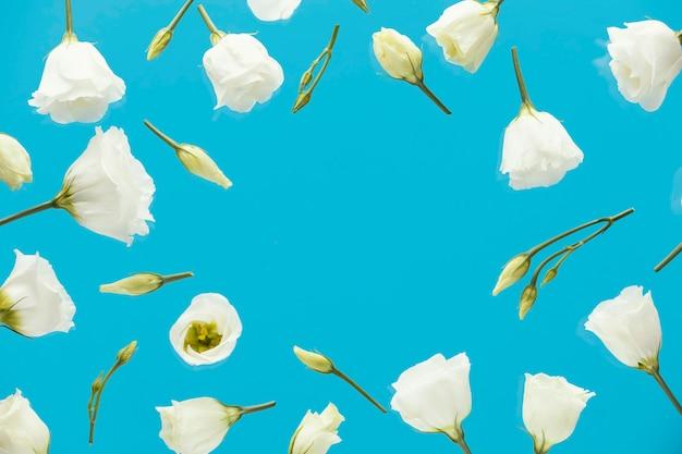 Postura plana de rosas primaveris com espaço de cópia