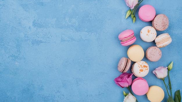 Postura plana de variedade de macarons com rosas e cópia espaço