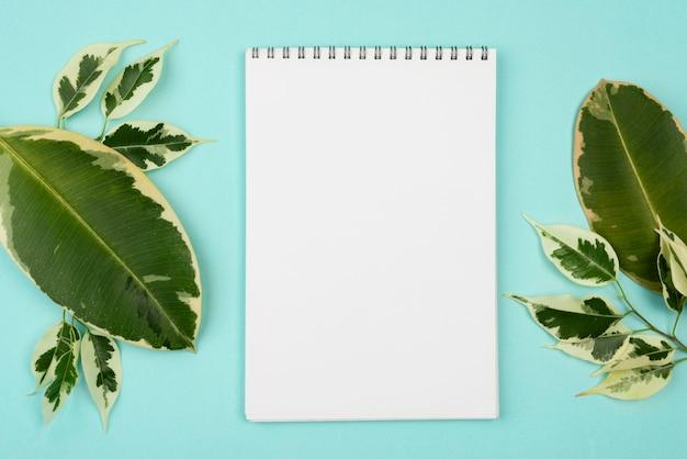 Postura plana do caderno com lindas folhas de plantas