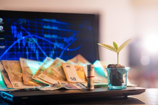 Pote com uma planta cheia de bitcoins e muito dinheiro