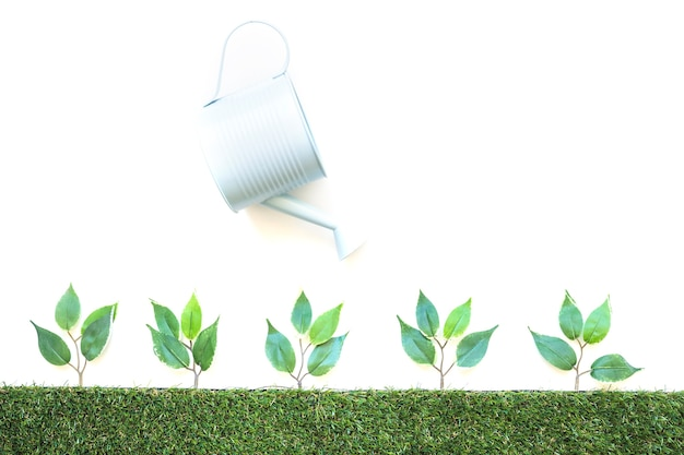 Pote de rega de plantas pequenas