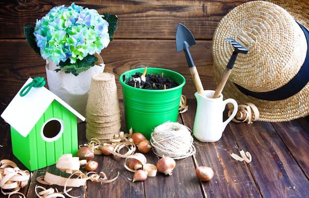 Potes de turfa, lata de água, caixa de ninho e bulbos de tulipa.