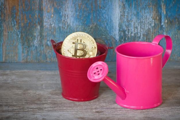 Pouco regador e moeda bitcoin em pote. antigo fundo de madeira. conceito de negócios