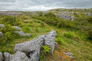 Poulnabrone paisagem hdr pedra