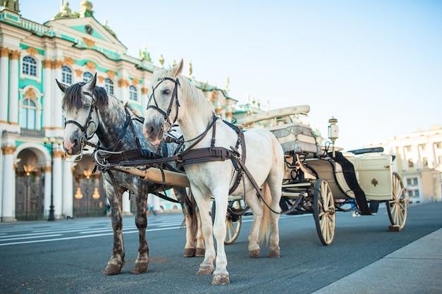 Praça do palácio em são petersburgo na rússia