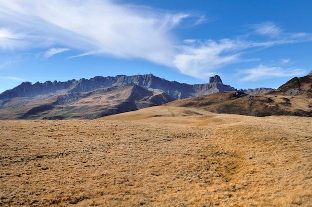 Prado amarelo na frente da montanha