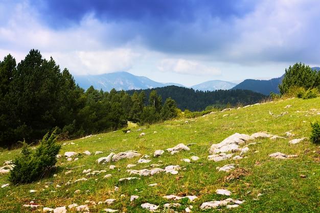 Prado das montanhas nos pirineus. catalunha