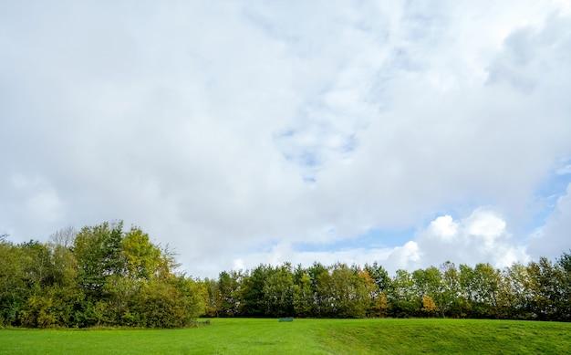 Prado de bela paisagem natural em parque público com poderia e céu azul na primavera ou verão.