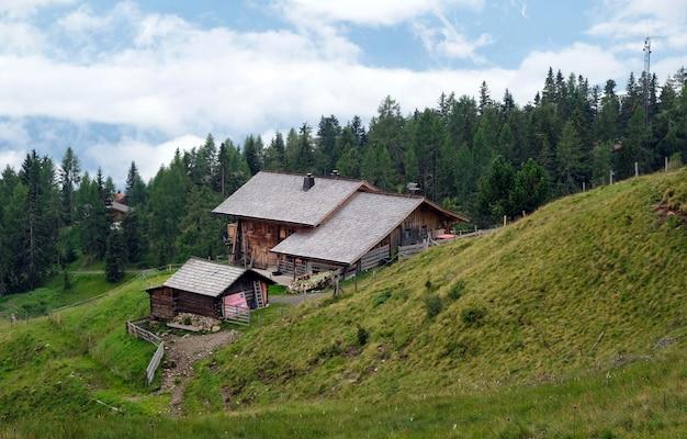 Prado natural nas montanhas dos alpes austríacos