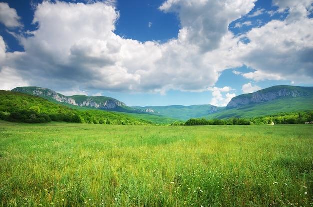 Prado verde na montanha.