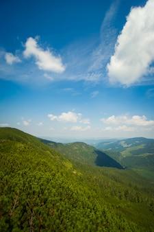 Prados bonitos nas montanhas