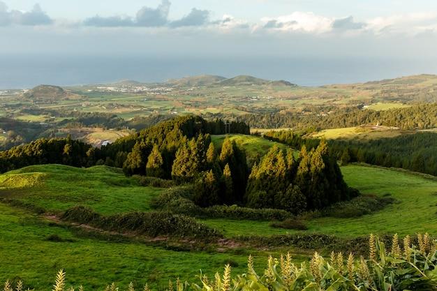 Prados verdes ao pôr do sol, san miguel, açores