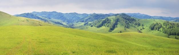 Prados verdes e encostas de montanha, verão, natureza panorâmica, altai
