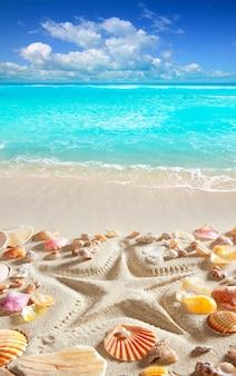 Praia areia estrela do mar impressão caraíbas tropical mar