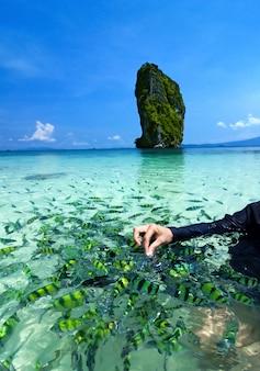 Praia bonita e mar tropical, krabi, na tailândia.