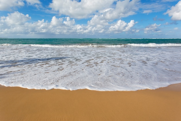 Praia caribenha com céu azul