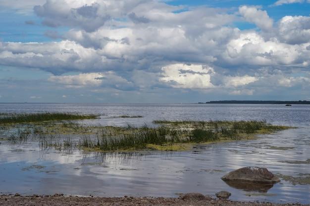 Praia coberta de mato do golfo da finlândia