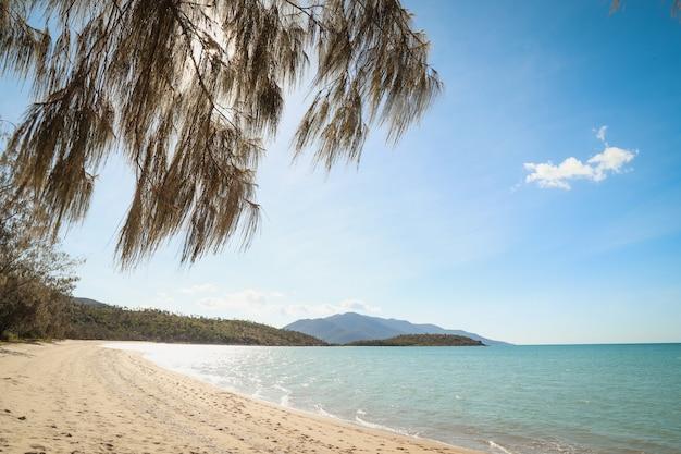 Praia coberta de verde cercada pelo mar com colinas sob um céu azul