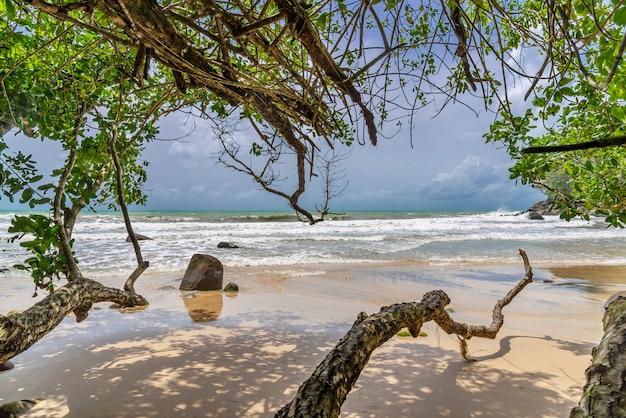 Praia com árvores e mar azul e areia branca