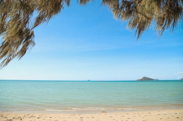 Praia com árvores rodeadas pelo mar com colinas sob o sol ao fundo