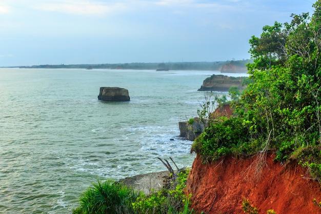 Praia com bela costa e paisagem com árvores verdes