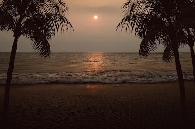 Praia com duas palmeiras e vista para o mar