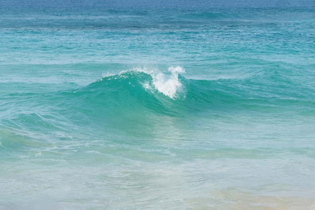 Praia com parafuso onda do oceano. república dominicana.