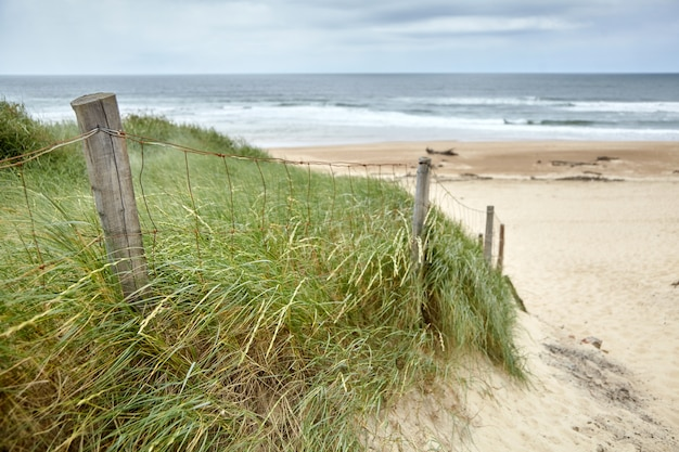 Praia da costa de prata francesa