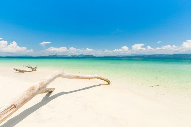 Praia de areia branca e barco de cauda longa na ilha de khang khao (ilha de bat)