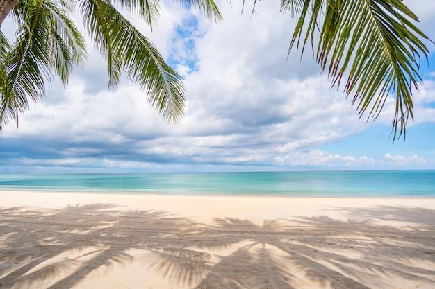 Praia de areia e palmeiras em dia de verão