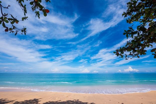 Praia de areia, mar azul e céu com folhas em primeiro plano