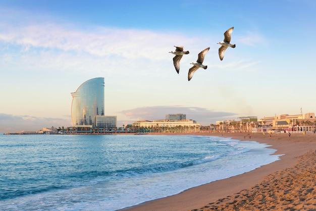 Praia de barceloneta em barcelona com o céu colorido no nascer do sol. à beira-mar, praia, costa na espanha.