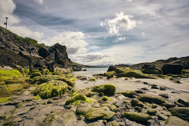 Praia de castle cove cercada pelo mar e rochas sob um céu nublado durante o dia na irlanda