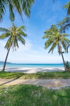 Praia de patong de phuket praia de verão com palmeiras em torno de patong praia ilha de phuket, tailândia, bela praia tropical com fundo de céu azul na temporada de verão copie o espaço.