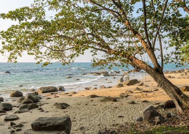 Praia de pedra com paisagem de balanço de madeira