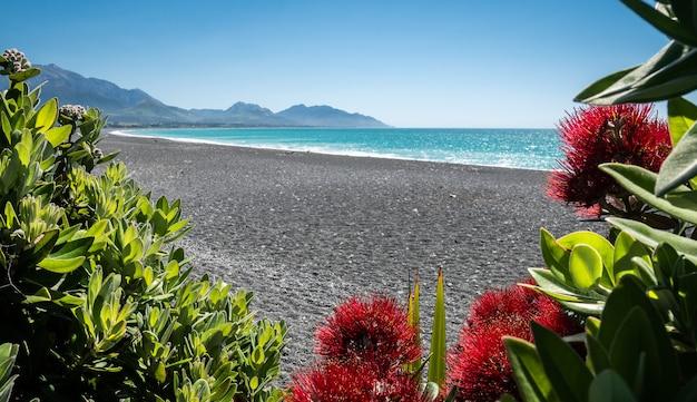 Praia de seixos com água azul e céu azul com montanhas ao fundo filmadas em kaikoura, nova zelândia