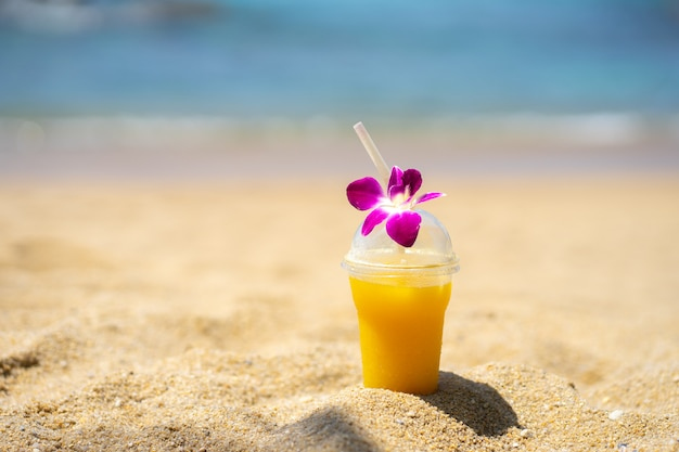 Praia de verão na natureza sol luz