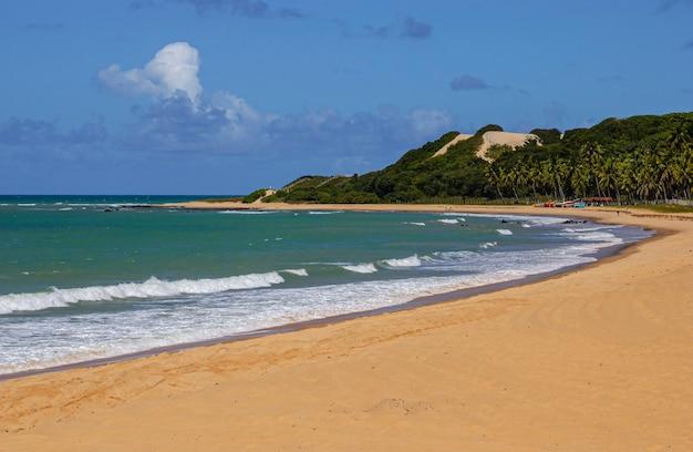 Praia do bacopari em baia formosa, rio grande do norte, brasil.