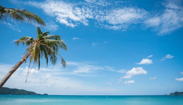 Praia do paraíso tropical com areia branca e palmeiras de coco