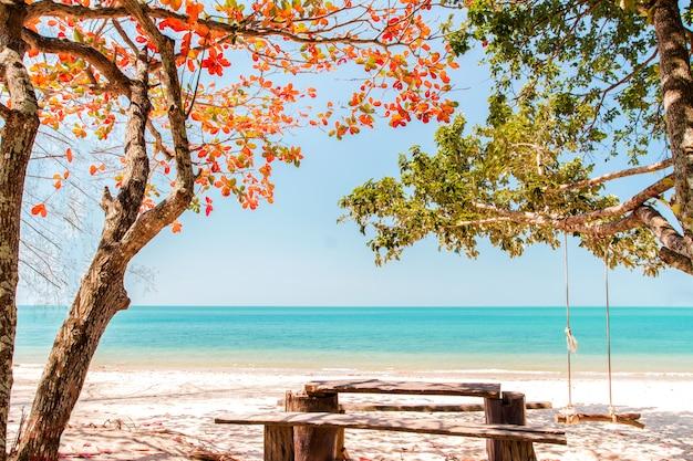Praia e árvores mudam de cor com balanço pendurar no verão