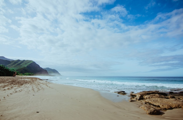 Praia e mar no havaí, oceano pacífico
