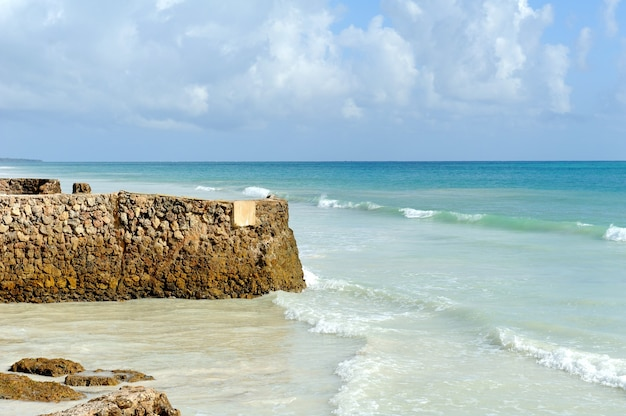 Praia e oceano tropical. céu e oceano