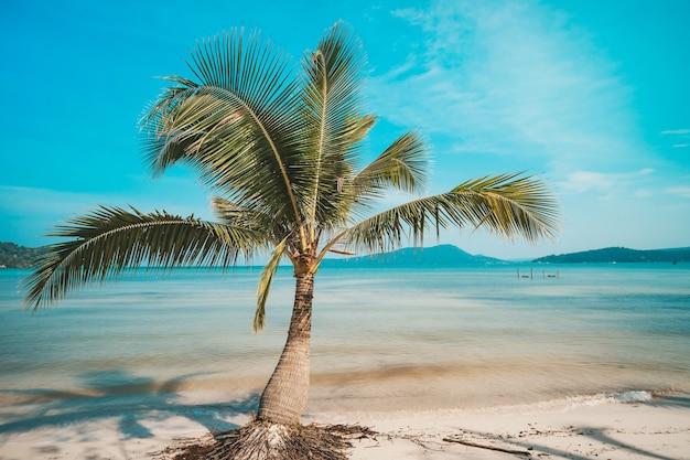 Praia em um belo dia ensolarado de verão. ilha de koh rong sanloem, baía saracen. camboja, viagem de vacinação na ásia