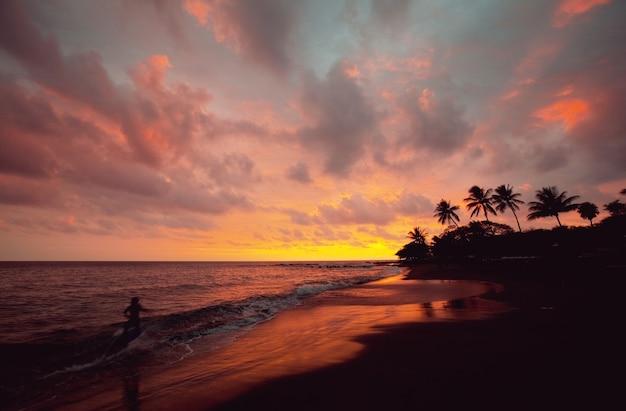 Praia havaiana incrível