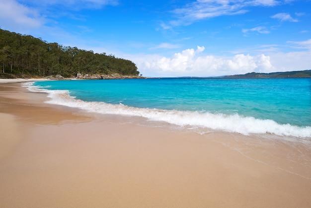 Praia nudista de figueiras nas ilhas islas cies de vigo