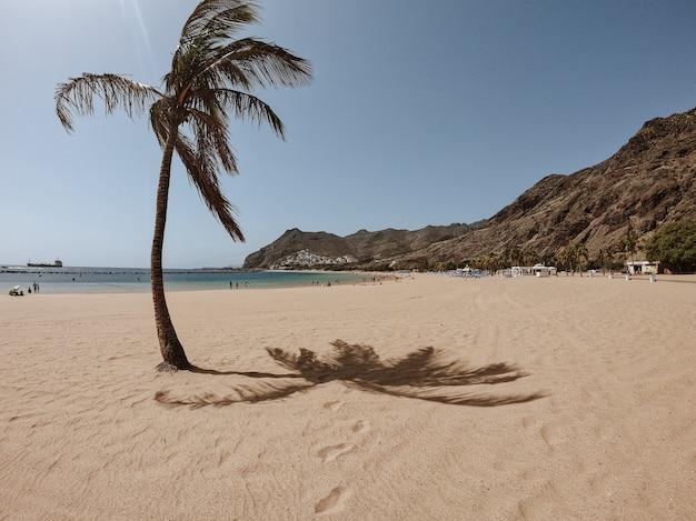 Praia paradisíaca com palmeira à esquerda